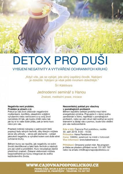 Detox pro duši
