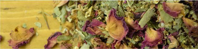 bylinné čaje a odvary